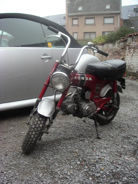 dax rally grille